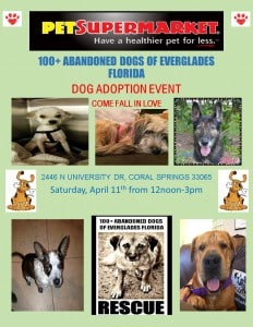 Adoption event 4.11.15