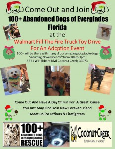 Adoption Event - Walmart