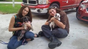 Patch and Obby adopted together1