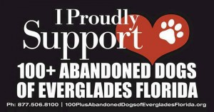 Support 100+
