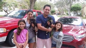 Jingle and Twinkle adopted together