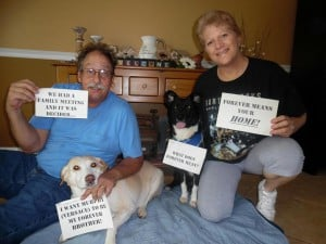 Versace Adopted