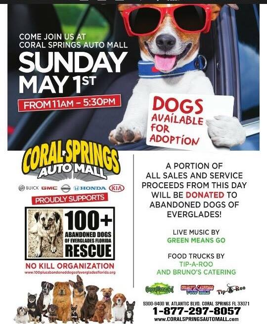 Coral Springs Auto Mall >> Today! 11-3 | 100+ Abandoned Dogs of Everglades Florida, Inc.