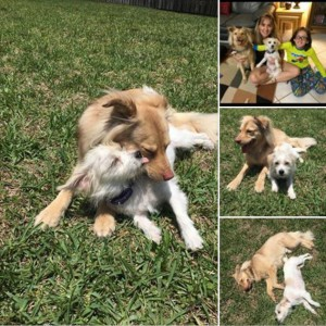 Sophie adopted with Nash