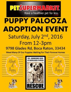 Pet Supermarket Puppy Palooza - 07.02.16