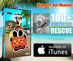Rescue Dogs The Movie Itunes