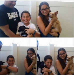 Sandy and Sonny Adopted!!!