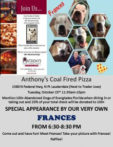 Anthonys Cold Fired Pizza every tuesday in October 2016-2