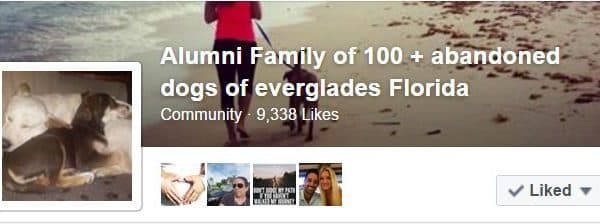 Please join us on our Alumni page…