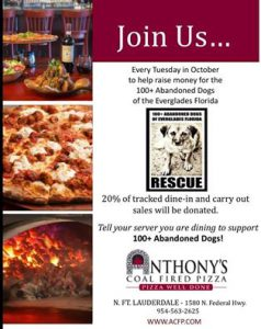 Anthonys Cold Fired Pizza every tuesday in October 2016-1