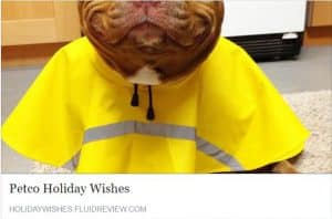 Petco Holiday Wishes