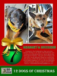 Hershey and Snickers27