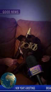 Denver Adopted5 New Years Eve 2017