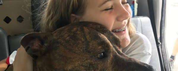 Update on Brusco 8-9 yr pitbull who lost his 28 yr old Daddy Robert.