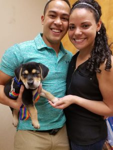 Tanya Puppy Tanner Adopted