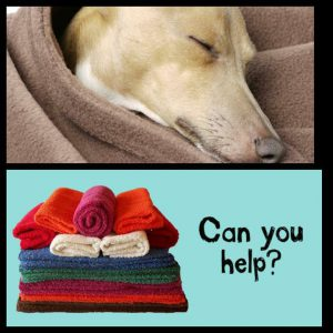 Blanket donations needed