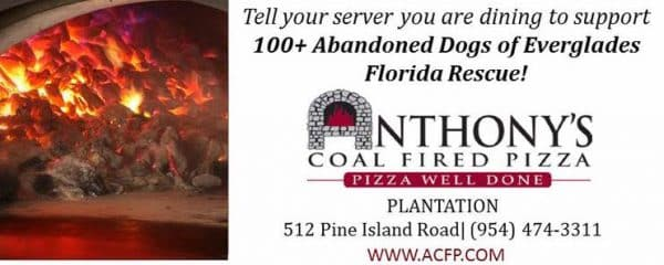 Fundraiser at Anthony's Coal Fire Pizza in Plantation, August 26th!