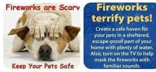 Please everybody take care of your pets!