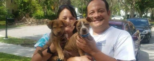 Our Puppies Karma & Kalvin Siblings have been Adopted Today Together!