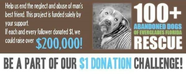 To ALL of our loving supporters, We are asking for your help to allow us to continue our mission.