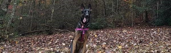 Willow (fka Holly) is loving her time up north with her family.