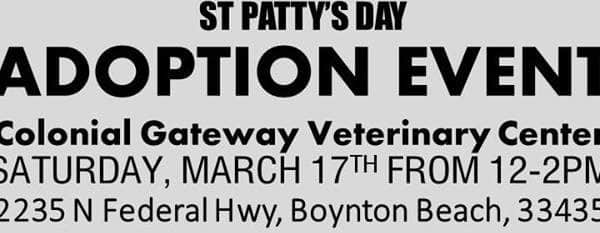 St Patricks Day Adoption Event