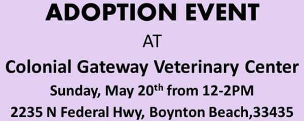 ADOPTION EVENT TODAY 12-2