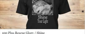 Glory shirt campaigns … here is the second option.