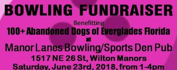 This Saturday June 23rd 1-4 Fundraiser Bowling for the Dogs!