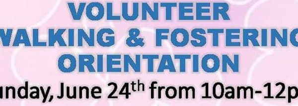 New Volunteer Walking Orientation on Sunday June 24th, 2018 at 10am.