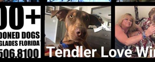 Tendler update!!!