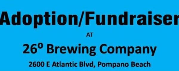 Join us for an adoption event and fundraiser at 26 Degree Brewing Company.