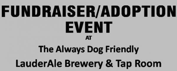 Fundraiser & adoption event at LauderAle Brewery & Tap Room