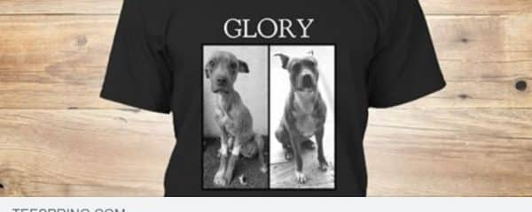 We have just launched a new Glory campaign!