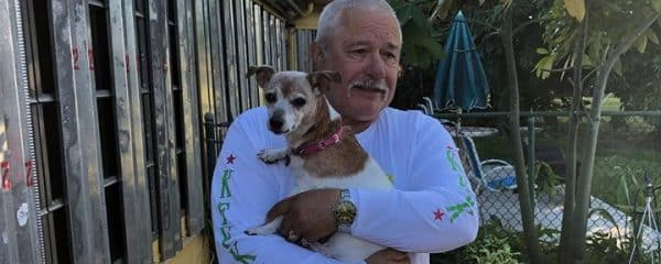 ADOPTED! Angel the 13 year old jack Russell