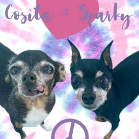Cosita and Sparky